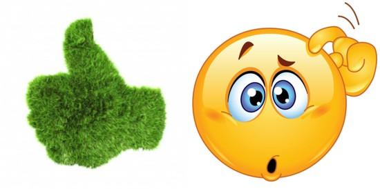 GreenthumbOrNotPerriwinkleStarr